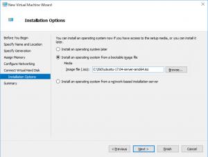 New Virtual Machine Wizard: Installation Options