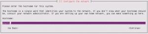 Ubuntu Server Install: Configure the network