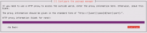 Ubuntu Server Install: Configure the package manager